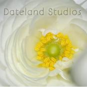 Dateland Studios