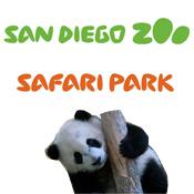 San Diego  Zoo and Safari Park