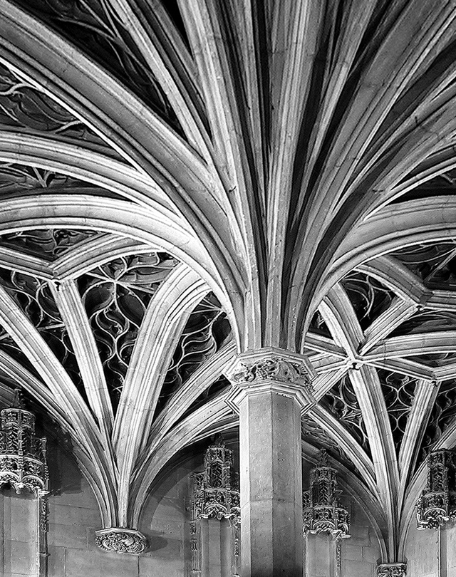 Cluny - chapel Ceiling.  Interior Photography by Steve Rossman