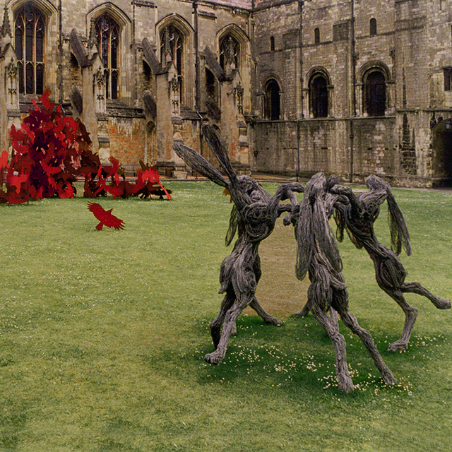 Hares and Ravens at Winchester Cathedral. Photography by Steve Rossman