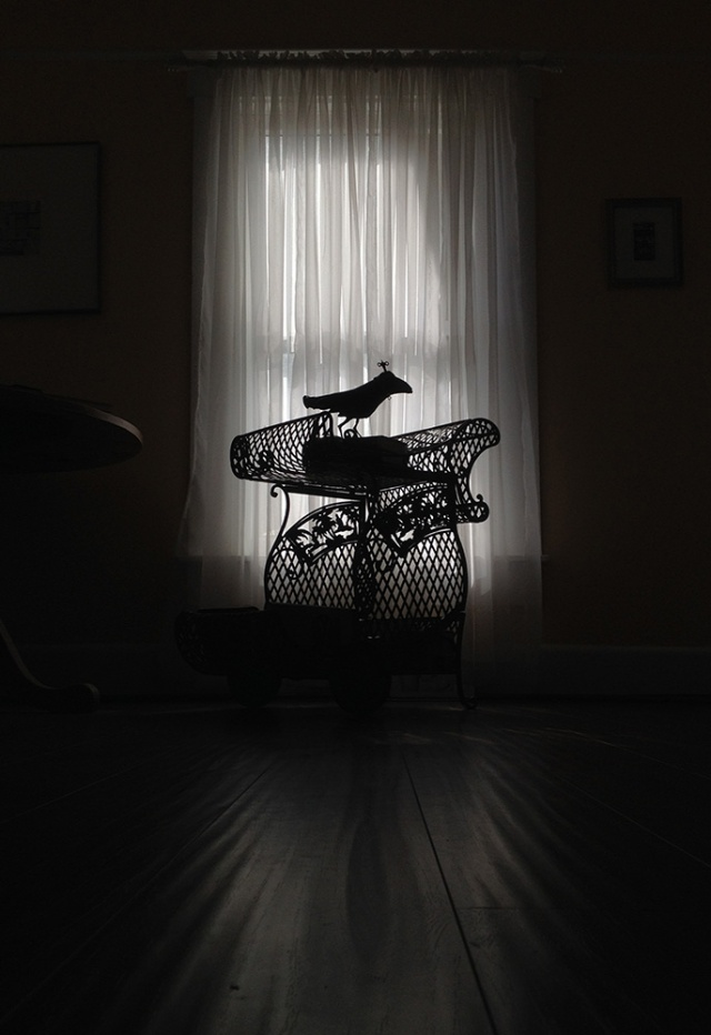 Theres_a_raven_in_the_library -iPhone photography by Steve Rossman-